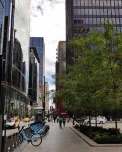 laurentiu-caramida-downtown-chicago-min