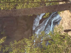 radu-bogdan-national-park-yellowstone-big-sky-montana-5